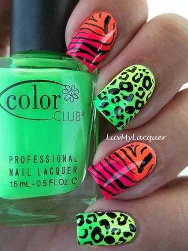 colour animal print designs Nail designs animal print