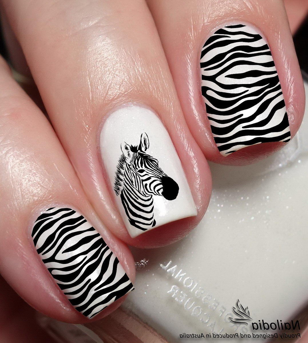 Zebra white and black nails