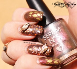 fall nail art designs 2015