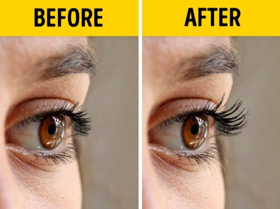 Lavender oil can be valuable for your eyelashes
