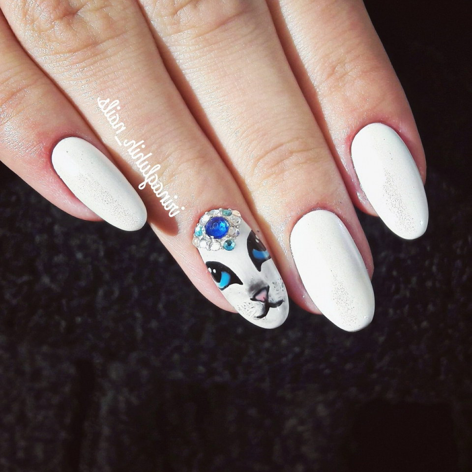 cat fake nails