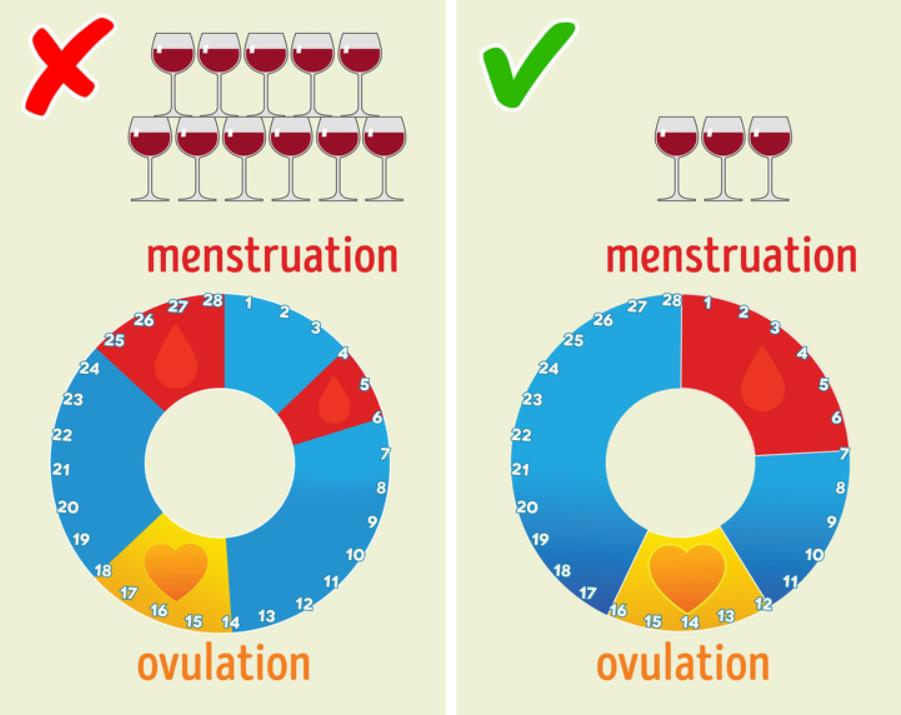 wine can influence menstruation