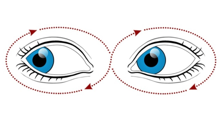 Move your gaze in different directions