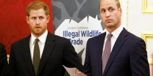 Prince Harry, Prince William 'really did not leave on excellent terms,'