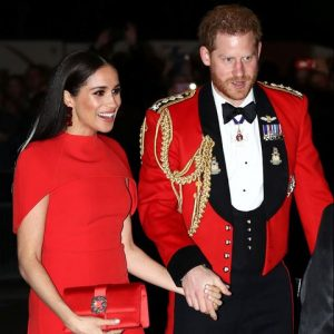 Meghan Markle Comforts Prince Harry Throughout Last Royal Engagement