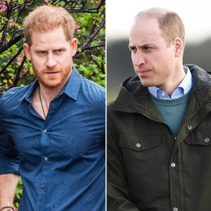 Royal Prince Harry, Prince William Still Feeling 'Temper' Towards Each Other