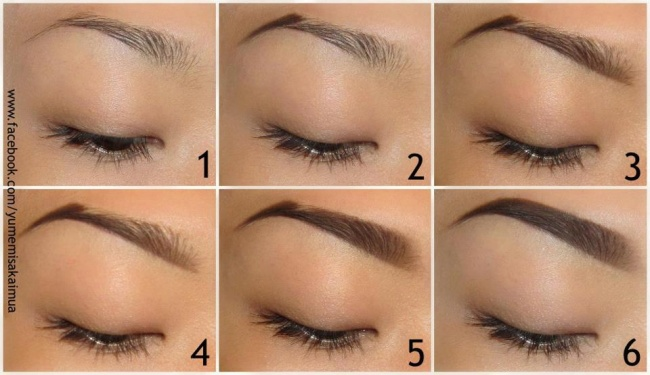 Shaping the eyebrows
