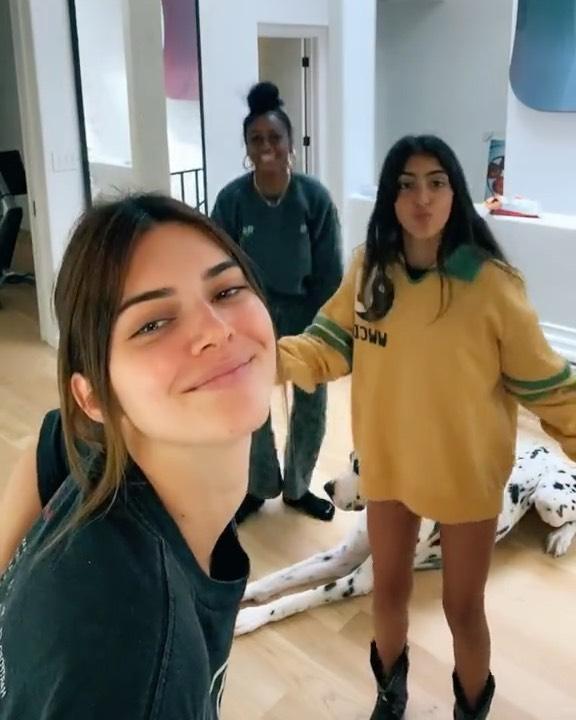 Kendall Jenner Twerks In TikTok Video Like Kylie