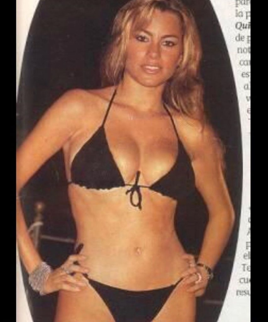 Sofia Vergara shares '90s throwback swimsuit breeze and followers assume she looks much better currently