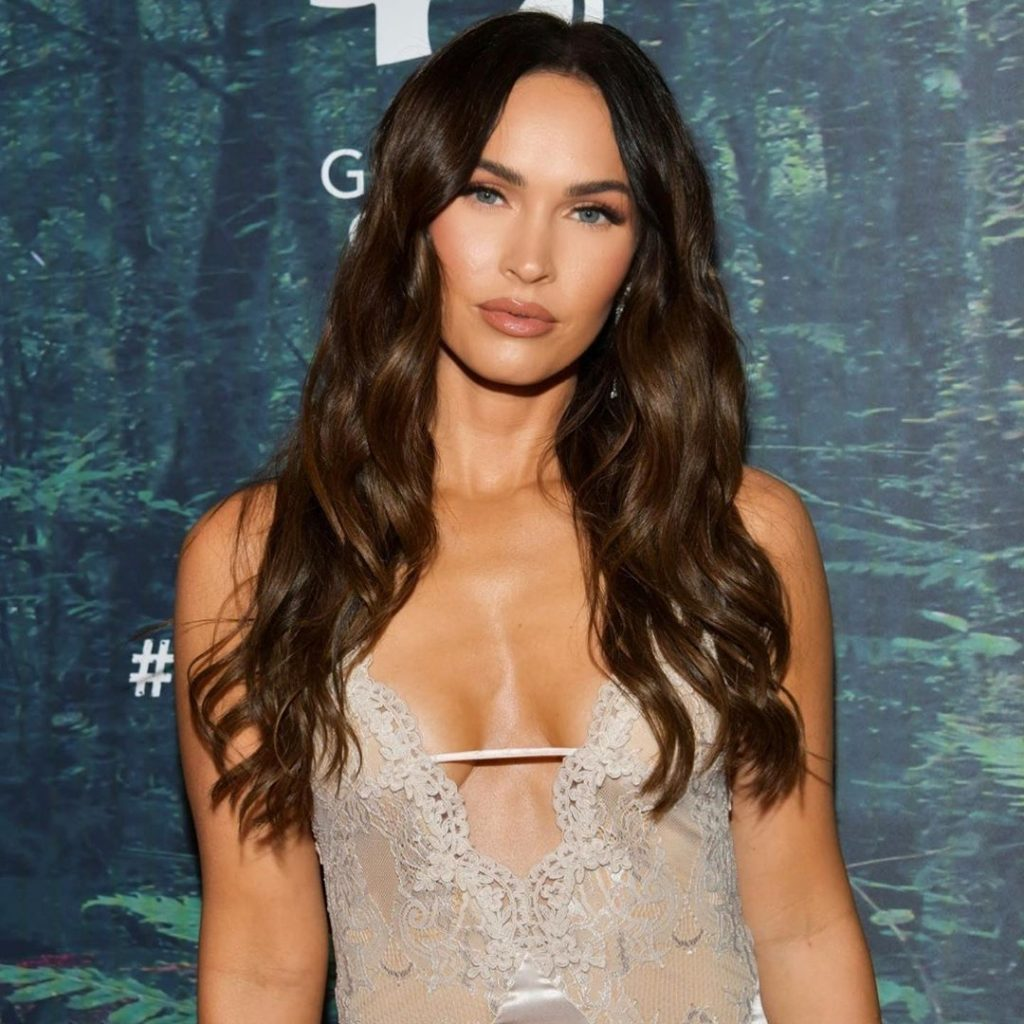 Megan Fox Launches a Declaration as Followers Need Michael Bay Ask Forgiveness to Her